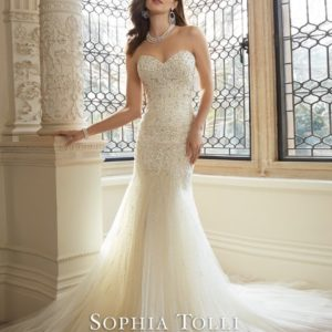 Y11625 WeddingDresses (Small) - kopie - kopie