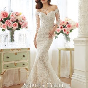 Y11632 LaceWeddingDresses (Small) - kopie - kopie