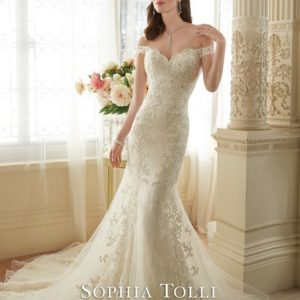 Y11634 LaceWeddingDresses (Small) - kopie - kopie