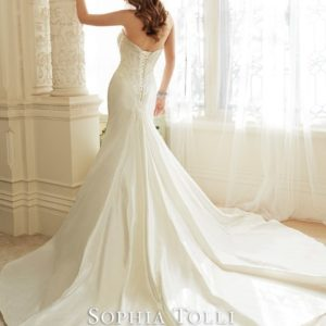 Y11638bk WeddingDresses (Small) - kopie - kopie