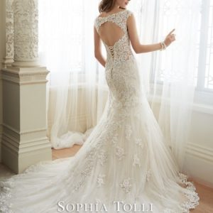 Y11643bk WeddingDresses (Small)